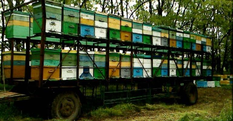 Платформа для перевозки пчел в два этажа