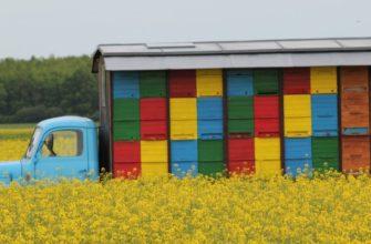 виды прицепов для перевозки пчелиных ульев
