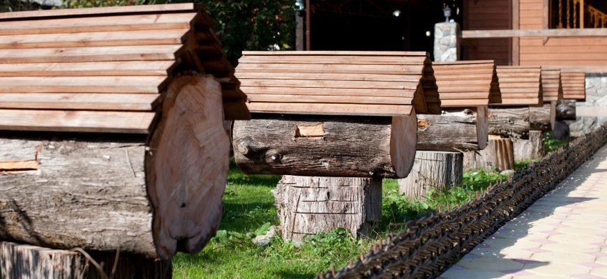 Колодное пчеловодство для начинающих