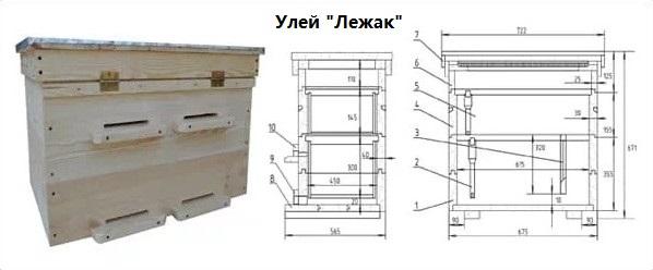 Улей Лежак