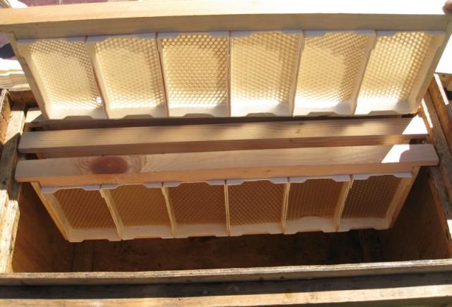 Секционная рамка для пчёл