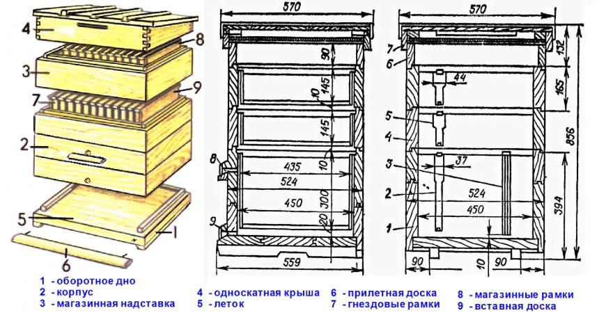 Устройство ульев Дадана-Блатта