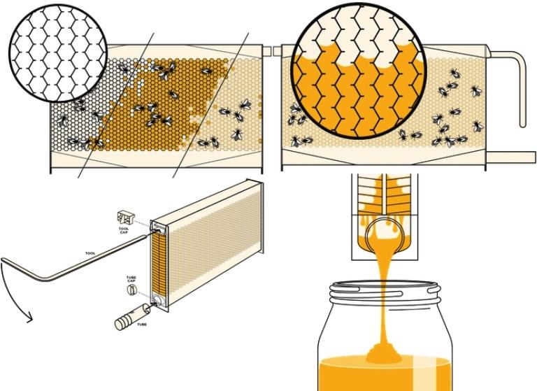 Автоматизация пчеловодства