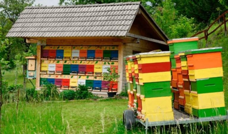 павильон для пчел стационарные