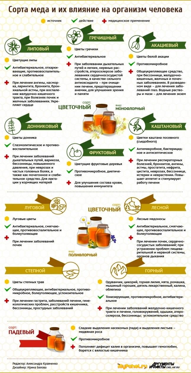 Сорта мёда и его лечебные свойства - Инфографика