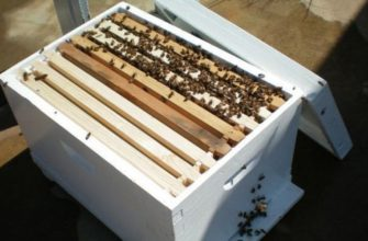 улей для пчел на 8 рамок