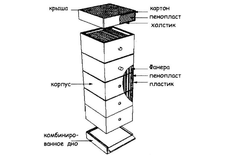Улей Шапкина каркас