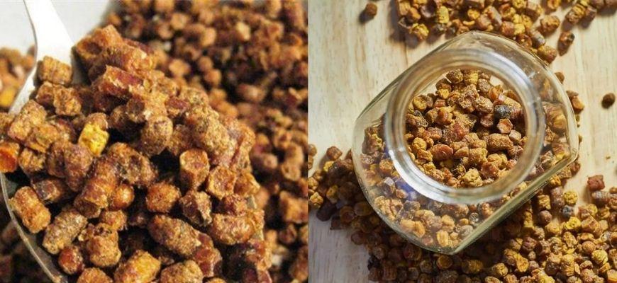 Пчелопродукт - перга